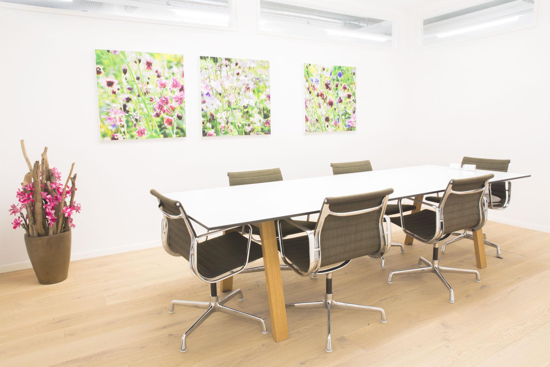 Sitzungszimmer Litrag + Partner AG